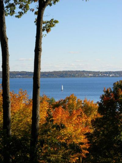 Fall in Harbor Springs