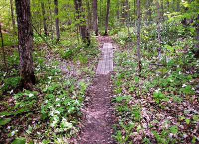 north_country_trail