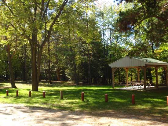 Memorial Tree Park