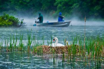 hamlin lake1